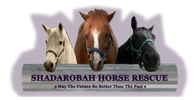 Shadarobah Horse Rescue